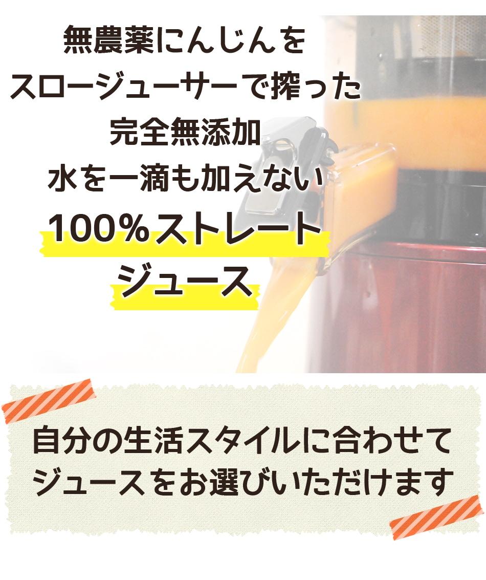 無農薬にんじんをスロージューサーで搾った 完全無添加・水を1滴も加えない100%ストレートジュース