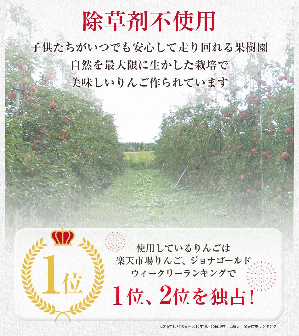 除草剤不使用だから子供たちがいつでも安心して走り回れる果樹園