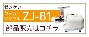 ZJ-B1