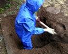 エントレ炭を埋める