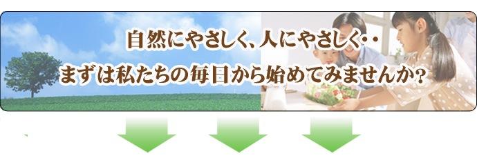 エコ洗剤 - 地球家族&初めてください