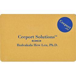 Ceeportカード(紺)