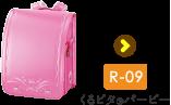 r-09 くるピタ®バービー