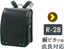 r-28 瞬ピカ®成長対応