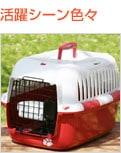 ペットキャリー/ファンタージーキャリー:M小型犬、猫用