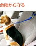 乗車用ベルト ヘッドレス固定タイプ サイズS