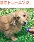 【犬のしつけに】マルチクリッカー