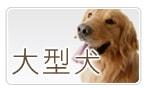 大型犬サイズ