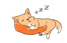 マット・ベッド(床ずれ対策・安眠)