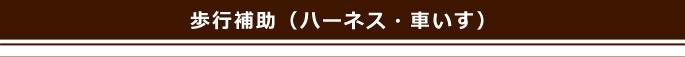 移動(カート・バギー)