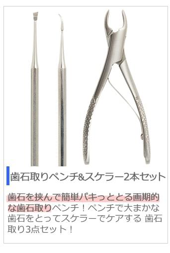 歯石取りペンチ&スケラー2本セット