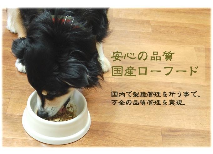 犬用生食 BONE