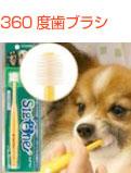 ビバテック ペット歯ブラシ シグワン 小型犬用歯ブラシ
