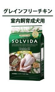 SOLVIDA-ソルビダ-インドアアダルト