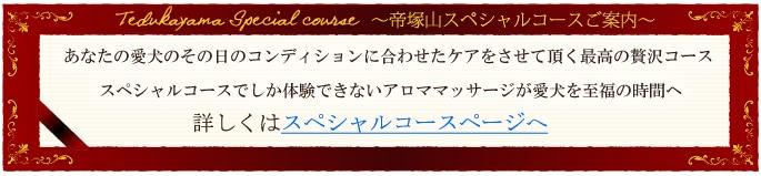 帝塚山スペシャルコースのご案内