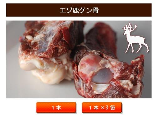 エゾ鹿ゲン骨