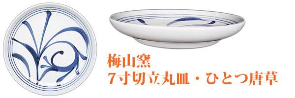 砥部焼の中皿