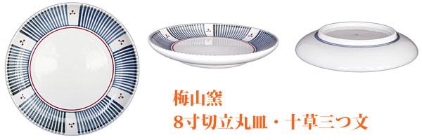 和食器砥部焼の大皿