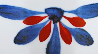 梅山 ごす赤菊