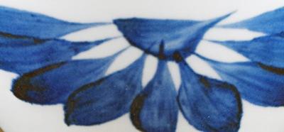 梅山 ごす菊