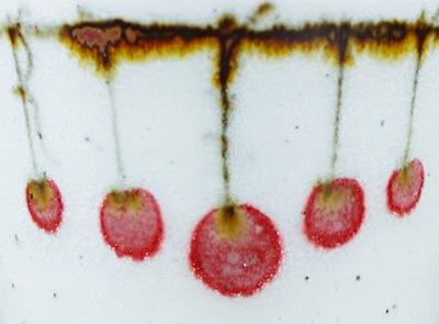 中田窯 つるし柿