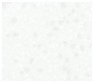 シャイニースノー C461K