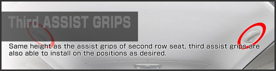 3rd ASSIST GRIPS