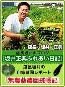 ブログ、坂井正典のふれあい日記