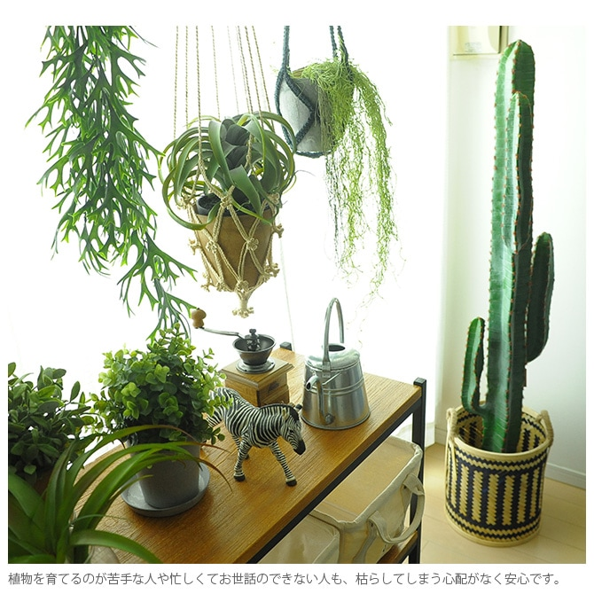 Brown. ブラウン キセログラフィカ ポット  観葉植物 フェイクグリーン イミテーションフラワー 造花 ディスプレイ ボタニカル 植物 多肉植物 インテリア おしゃれ