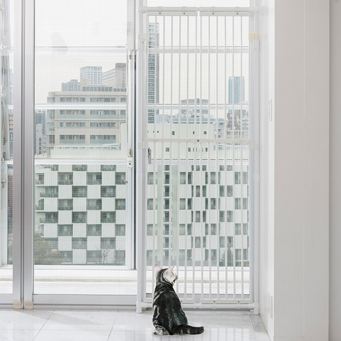 ねこの脱走防止 のぼれんニャン  安全柵 柵 網戸 脱走 防止 脱走防止 猫 ねこ ネコ つっぱり