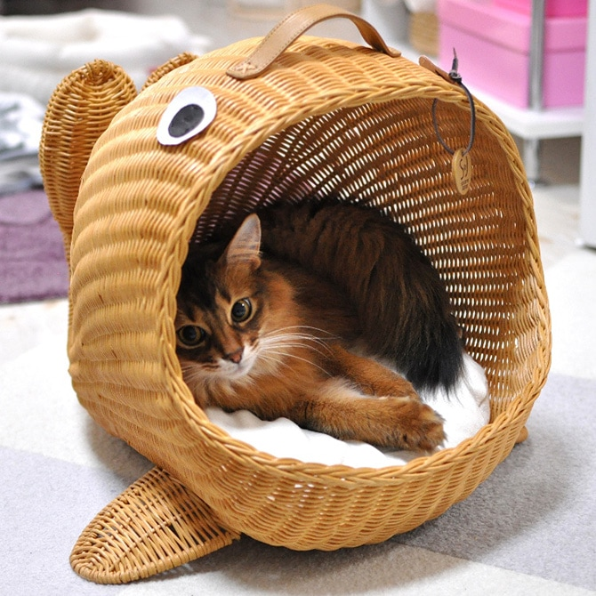 ラタン くじらベッド  キャットベッド 猫用ベッド ベッド ハウス クッション 犬用 かわいい おしゃれ 猫用 ネコ いぬ 犬 イヌ