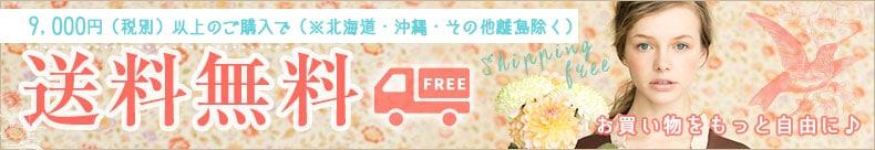 お買い物にもっと自由に9000円(税別)以上の購入で(※北海道・沖縄・その他離島除く)送料無料