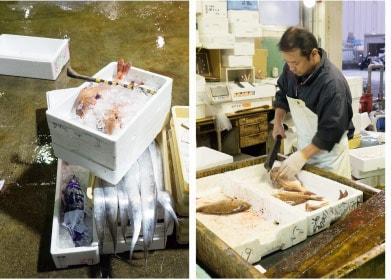 市場の魚と包丁さばき
