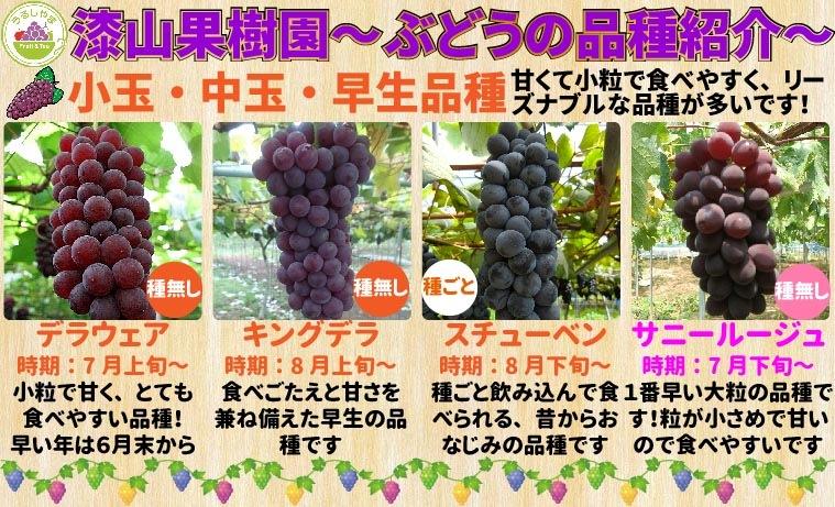 漆山果樹園