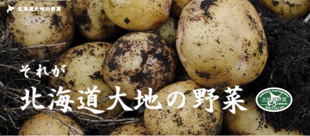 それが北海道大地の野菜