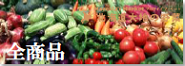北海道産 旬な野菜 果物
