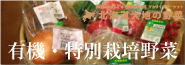 有機・特別栽培野菜