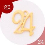 蟹座 24