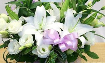 白を調とした清らかで静かなお供え花