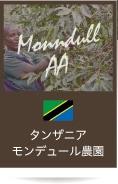 タンザニア モンデュール農園