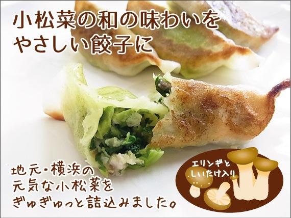 小松菜たっぷり和の餃子