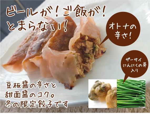 四川風ピリ辛餃子