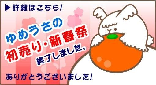 ゆめうさの初売・新春祭