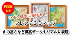 フレンチ3Dマップ