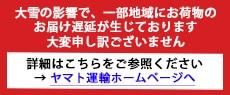 ヤマト_遅延