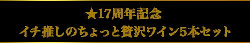 ★17周年記念 イチ推しのちょっと贅沢ワイン5本セット