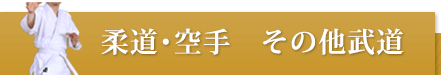 柔道・空手その他武道おすすめ商品
