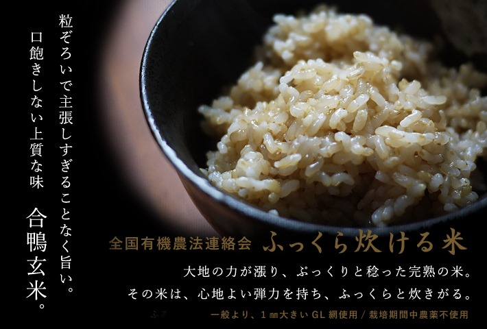 無農薬玄米のご案内