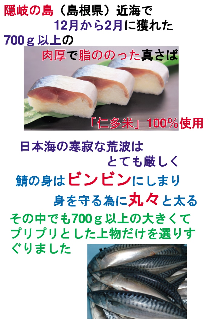 隠岐諸島沖で取れた真鯖を使って
