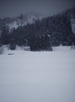 青木酒造 魚沼の雪景色